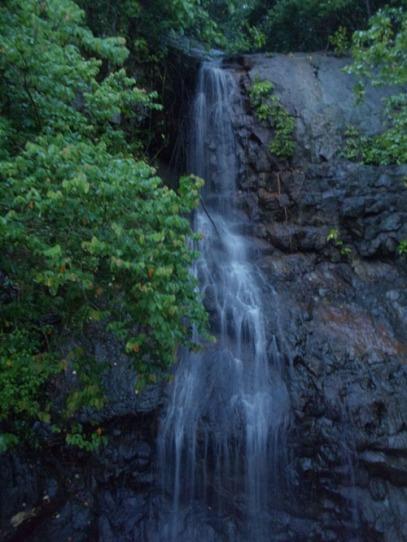 Green Bay Banyuwangi 2