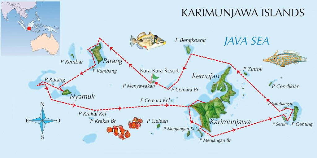 Karimunjawa Indonesia  city pictures gallery : Karimunjawa | Indonesia Tourism