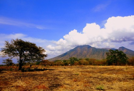 Baluran National Park1