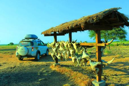 Baluran National Park6