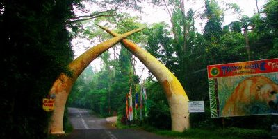 Safari Park11